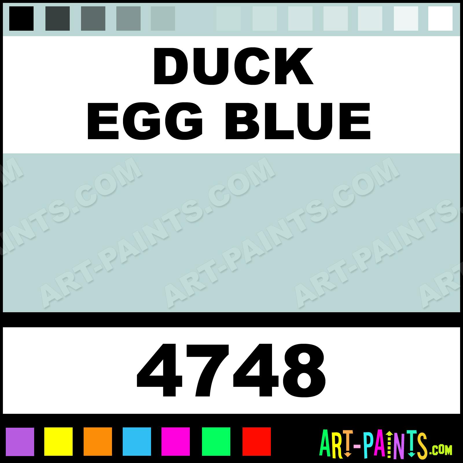 Duck Egg Blue Artist Acrylic Paints - 4748 - Duck Egg Blue Paint, Duck Egg  Blue Color, Model Master Artist Paint, BAD7D5 - Art-Paints.com
