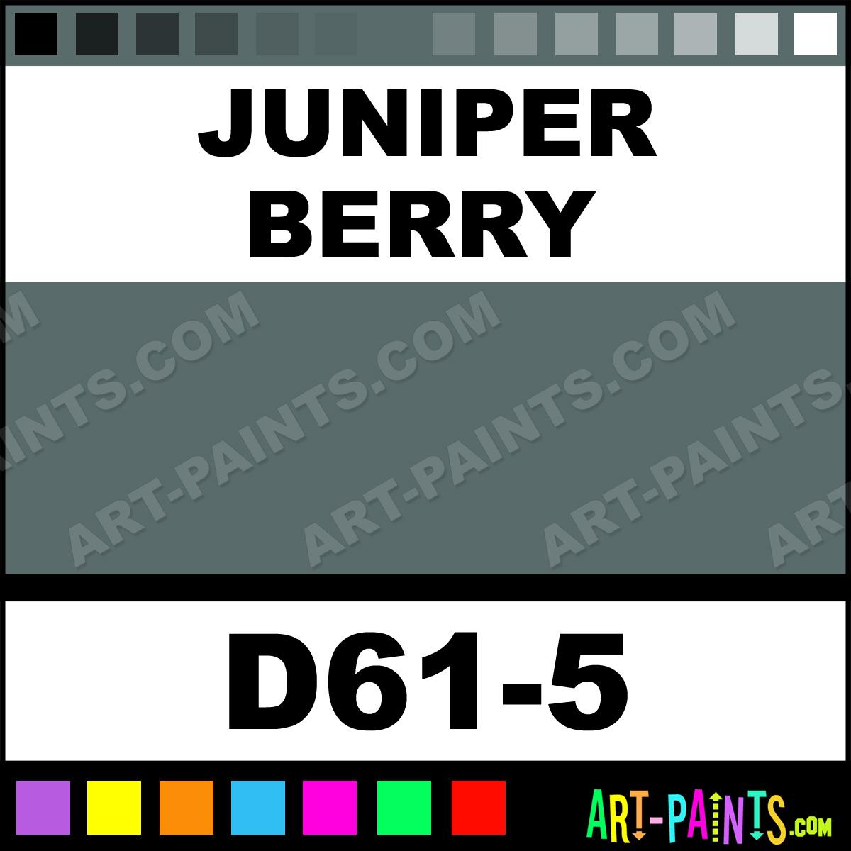 Juniper Berry Interior Exterior Enamel Paints D61 5